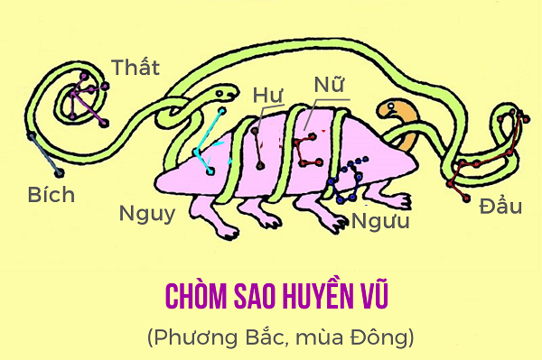 Chòm Sao Thanh Long
